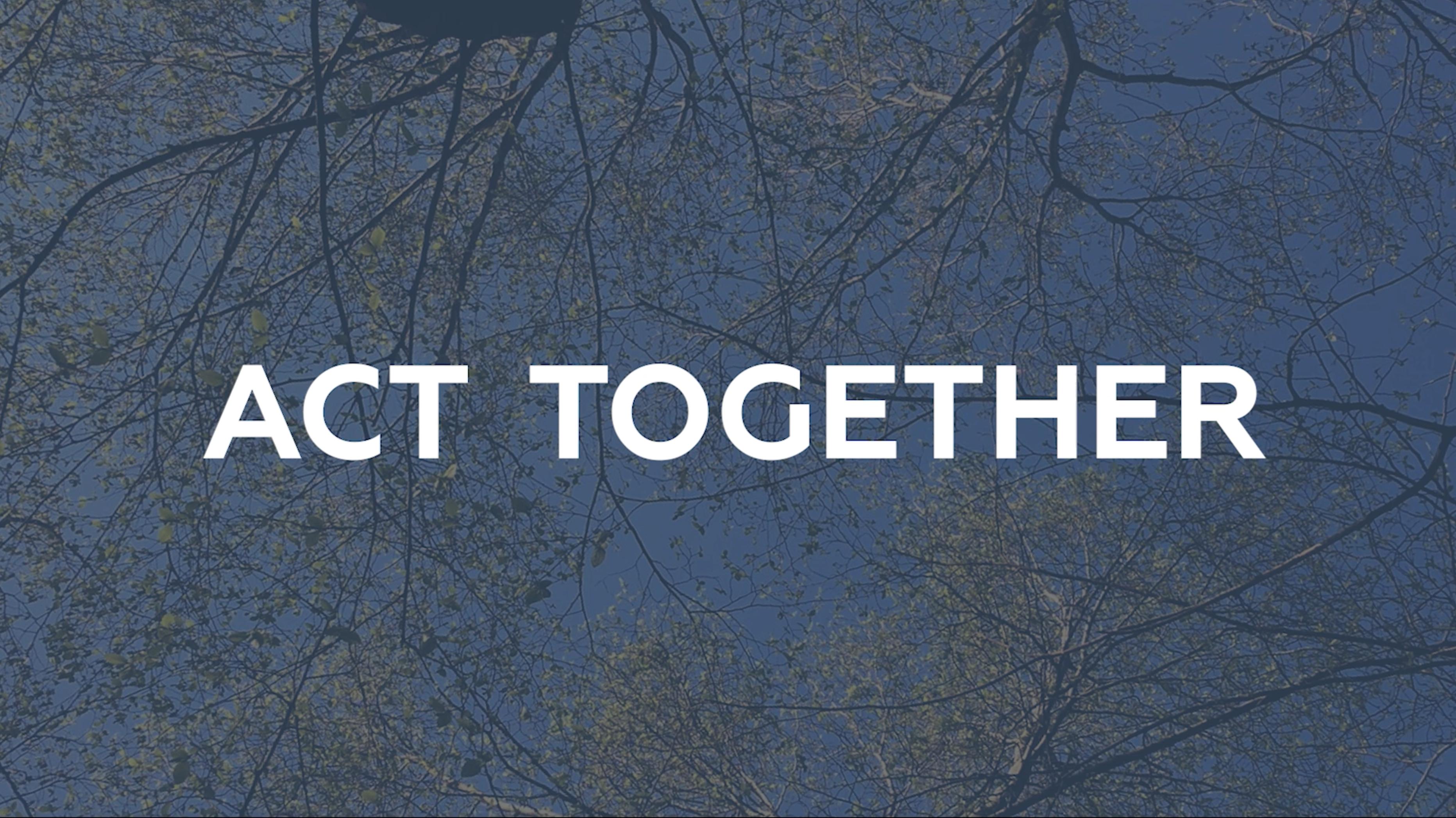 Moda circolare. Collaborazione e trasparenza nel progetto ACT TOGETHER